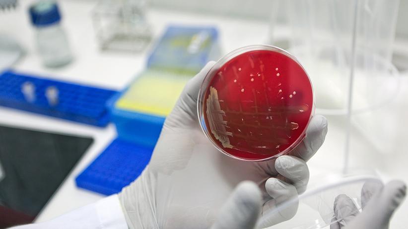 MRSA Methicillin-resistenter Staphylococcus aureus
