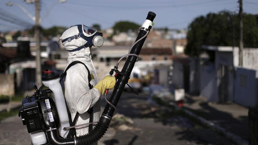 Zika-Virus: 71.000 Soldaten im Einsatz gegen Moskitos in Rio de Janeiro