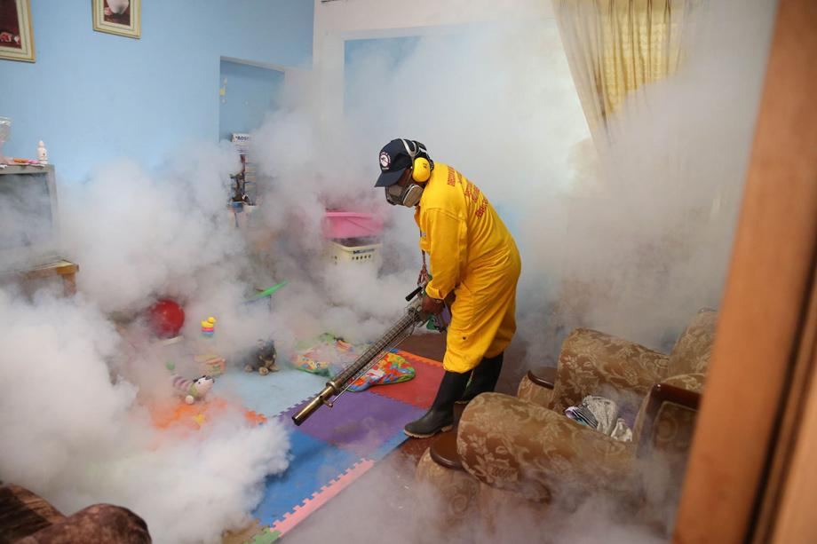 zika epidemie m cke gegen mensch zeit online. Black Bedroom Furniture Sets. Home Design Ideas