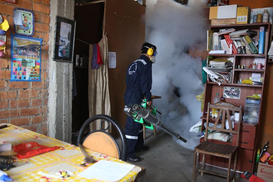 zika virus dengue ist doch viel schlimmer zeit online. Black Bedroom Furniture Sets. Home Design Ideas