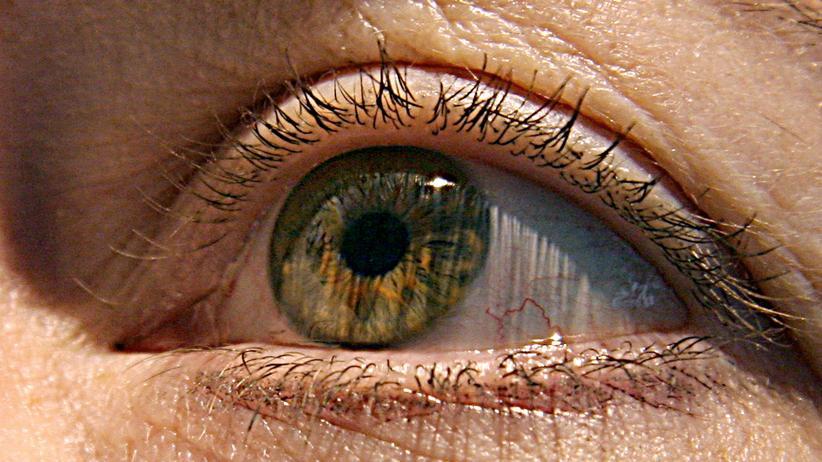 Auge, Iris, Augen, Medizin, ZEIT Doctor