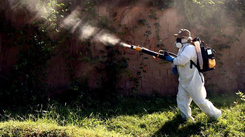 Zika Virus Erreger Brasilien Mücke Giftkanone