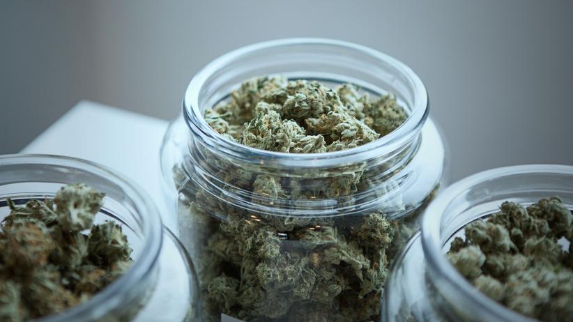 """""""Legal High"""": Blühendes Geschäft mit Cannabis?"""