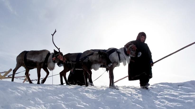 Anthrax: Milzbrand in Sibirien ausgebrochen