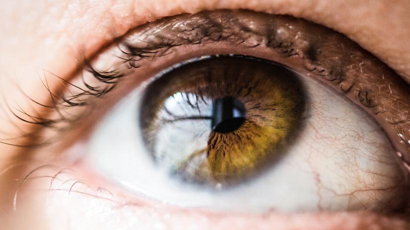 Retinitis Pigmentosa: Farben, Kontraste, weite Sicht: All das schwindet bei Retinitis-Pigmentosa-Betroffenen schleichend.