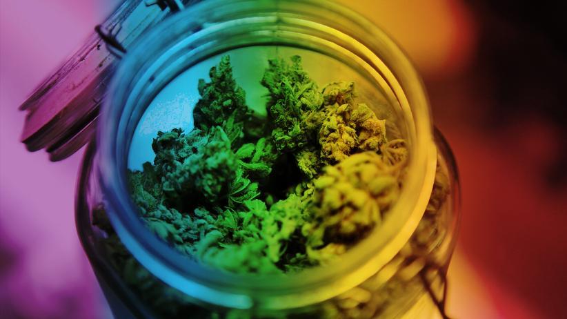 Cannabis: Eine sehr ernste, staatliche Angelegenheit