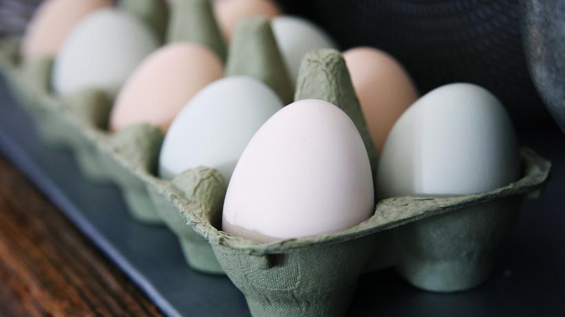Onlineservice: So sehen Sie, wo Ihr Ei herkommt