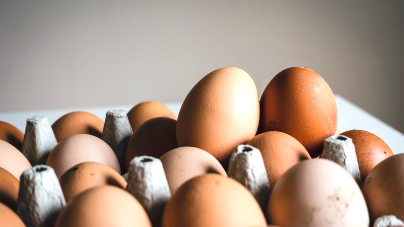 Fipronil: Giftig? Selbst wer Eier aß, in denen Fipronil steckte, wäre nicht gleich krank geworden.