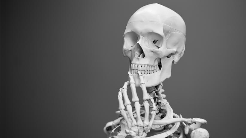 Knochen: Die Rippen schirmen das Herz ab, der Schädel schützt das Gehirn.