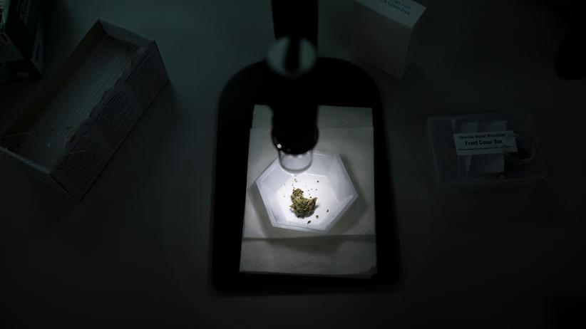 Hanftherapie: Grundsätzlich gilt, dass Cannabismittel nicht heilen, sondern höchstens Symptome lindern können.