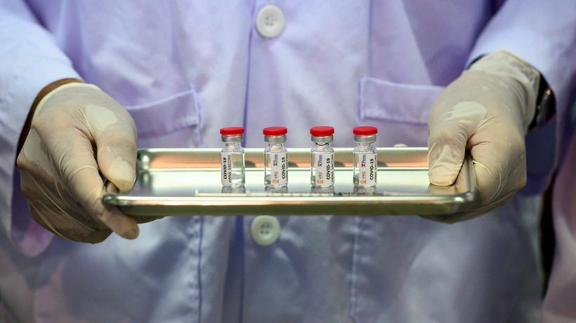 US-Pharmakonzern: Im Mai 2020 wurde ein möglicher Impfstoff gegen das neuartige Coronavirus in Thailand an Affen ausprobiert.