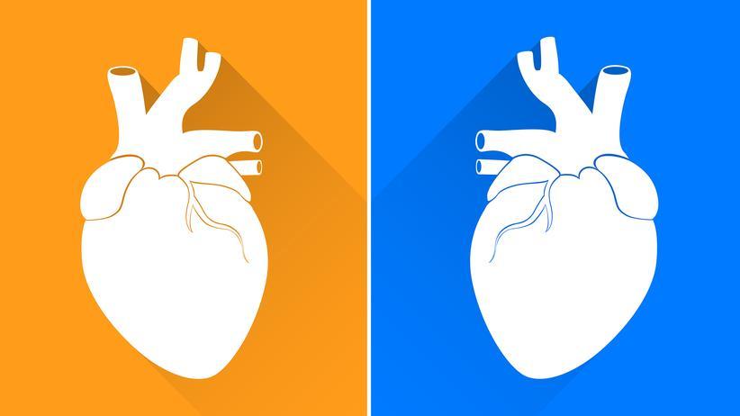Unterschied Www Und Internet