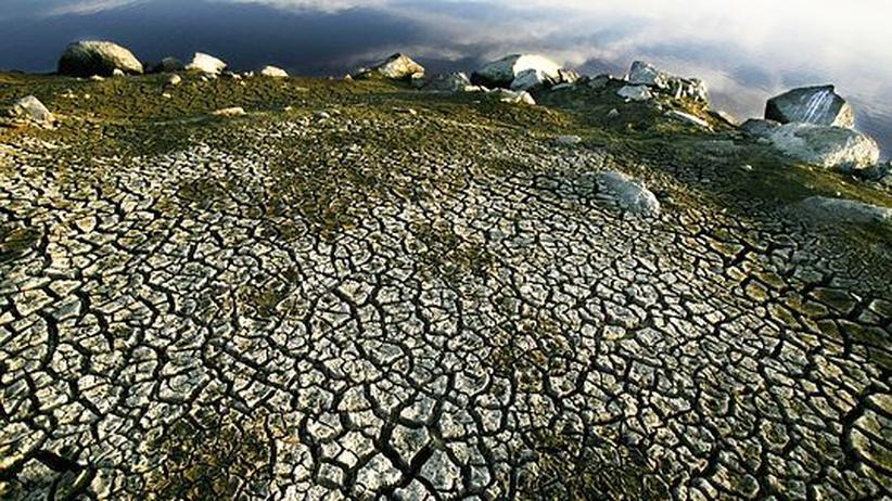 Klimawandel und der Mensch: Rissige Erde: Das wichtigste Wasserreservoir für die nahegelegene Stadt Goulburn in Australien trocknet aus