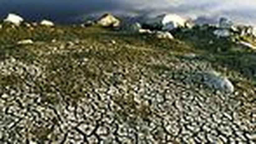 Klimawandel und der Mensch: Hilferufe aus aller Welt