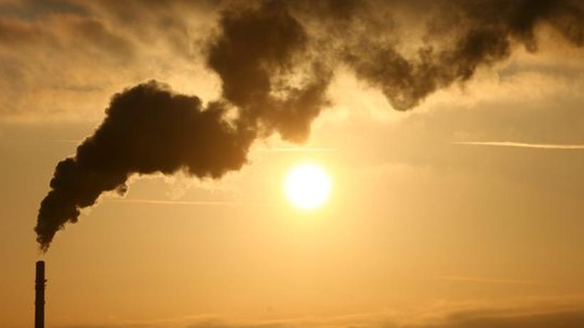 Rauch steigt aus dem Kamin des Gemeinschaftskraftwerks Kiel