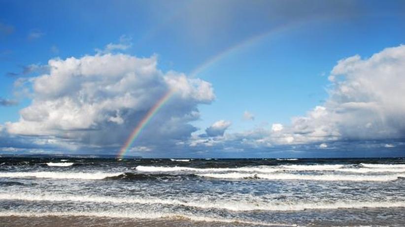Gefahr durch Geoengineering: Rettet die Welt: Gut 200 Forscher sinnierten in Kalifornien über Experimente mit Wolken und Ozeanen