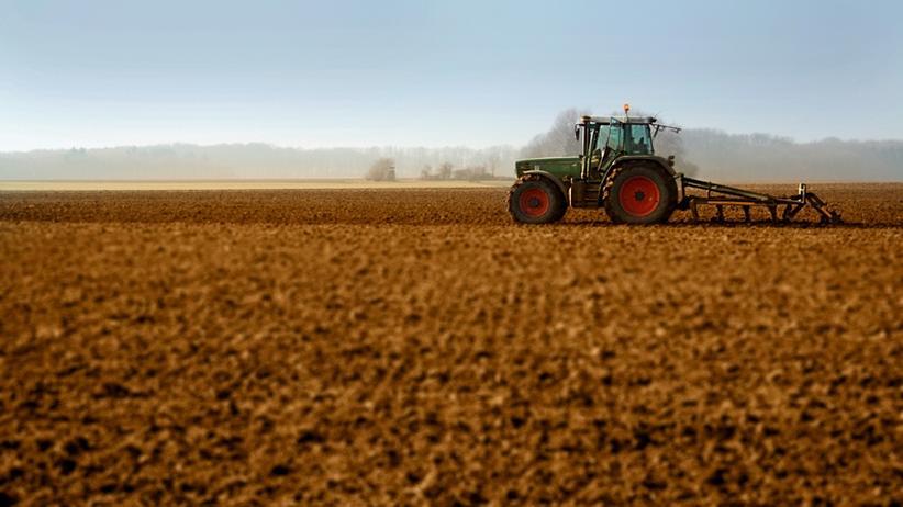 Landwirtschaft: Öko-Bauern brauchen keine Subventionen