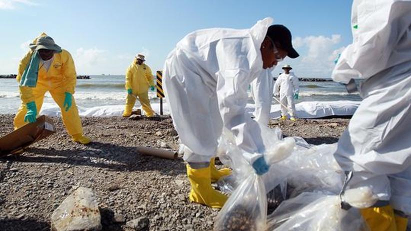Arbeiter säubern die vom Öl verseuchten Strände Louisianas