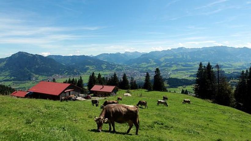 Ein Bauernhof in den Alpen: In der Landwirtschaft der Zukunft wird jedes pflanzliche Molekül verwertet. Nichts geht verloren