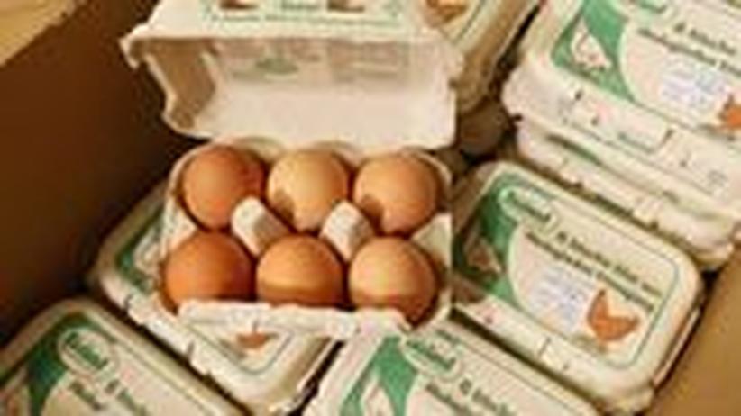 Dioxin Lebensmittel Eier Fleisch Verbraucher Ratgeber