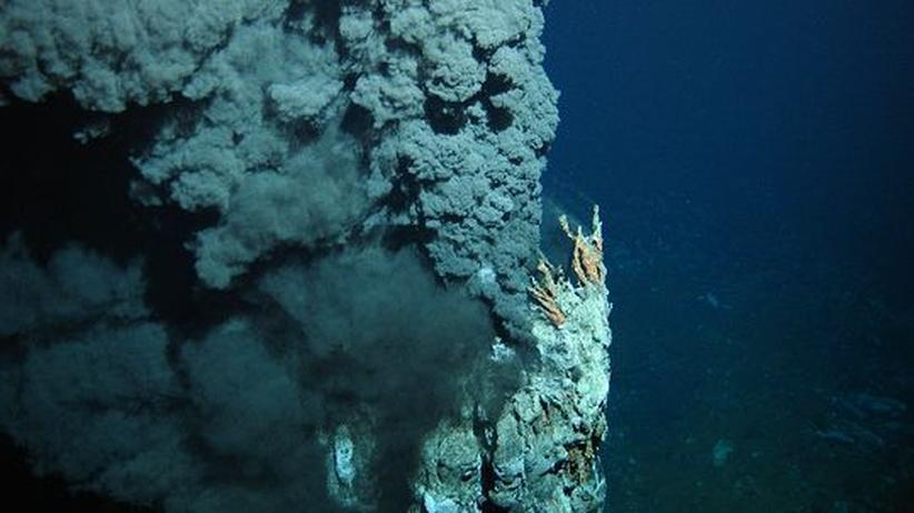 Rohstoffabbau im Pazifik: Der Schatz in der Tiefsee