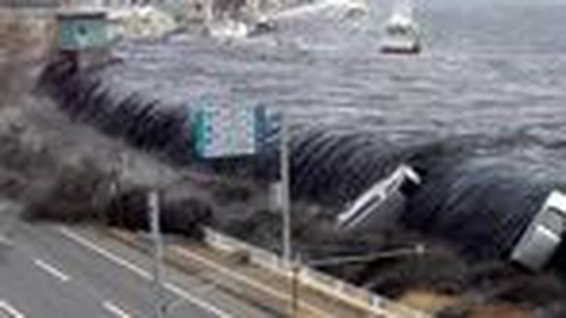 Katastrophenprävention in Japan: Gewarnt vor dem Tsunami