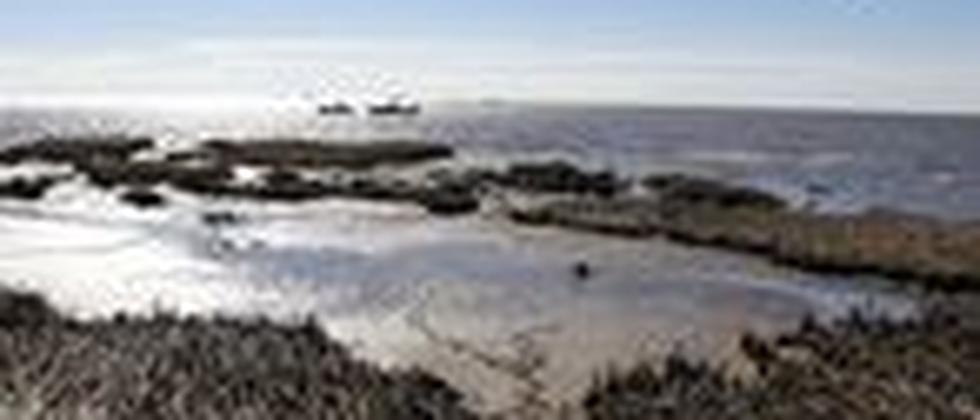 Ölpest Golf von Mexiko Öl BP Marschland