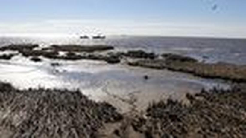 Ölpest: Wo ist das Gift im Golf von Mexiko geblieben?