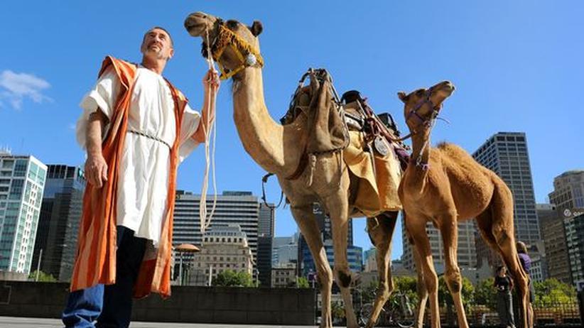 Kamele im australischen Melbourne: 2010 erinnerte eine Ausstellung an die Geschichte der Paarhufer und der Menschen, die sie ins Land brachten.