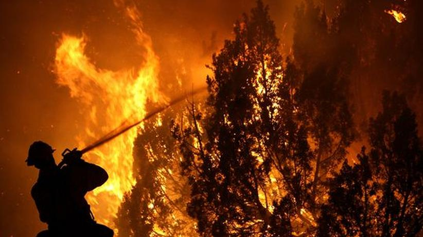 Feuer Texas Feuerwehr Waldbrände Branbekämpfung USA