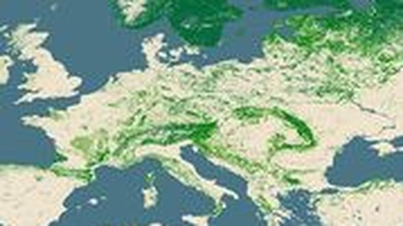 Bewaldung Europa Karte