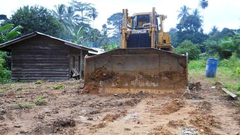 Korup Bulldozer Kamerun