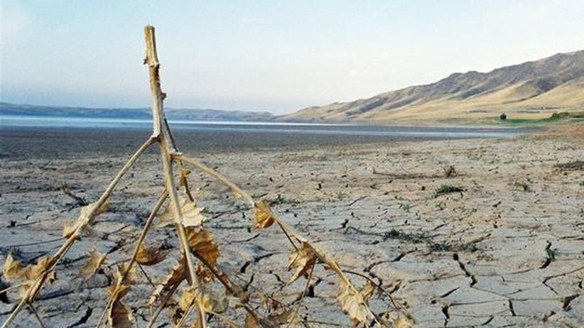 Sonderbericht: Weltklimarat IPCC prognostiziert neue Wetterextreme