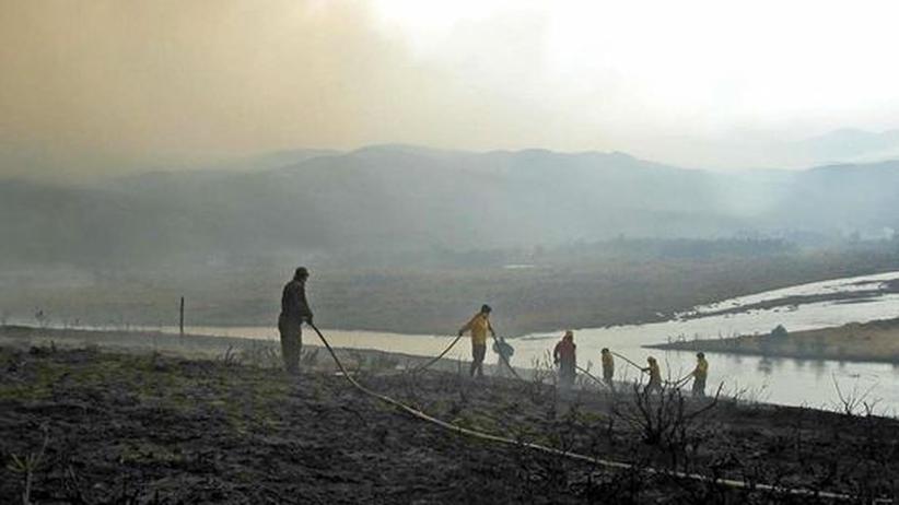 Chile: Feuer zerstört Teile eines Nationalparks