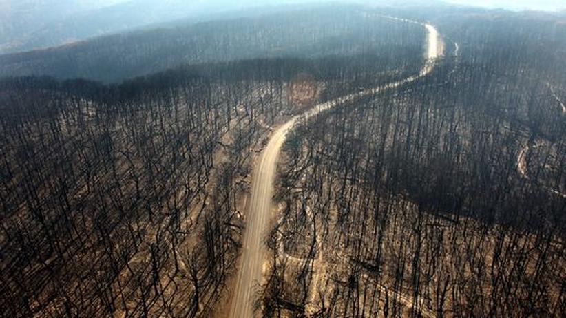 Erderwärmung: CO2-Sünder Australien macht den Klimaschutz zum Gesetz