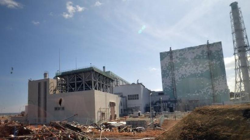Fukushima: Chronik des Versagens