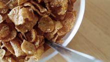 Bio-Cornflakes dürfen nur 50 von 300 zugelassenen Zusatzstoffen enthalten.