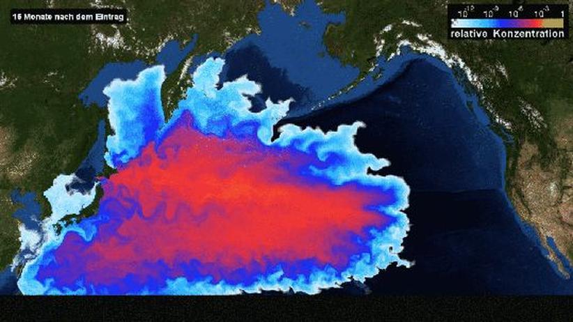 Fukushima: Der Pazifik hat die Radioaktivität geschluckt