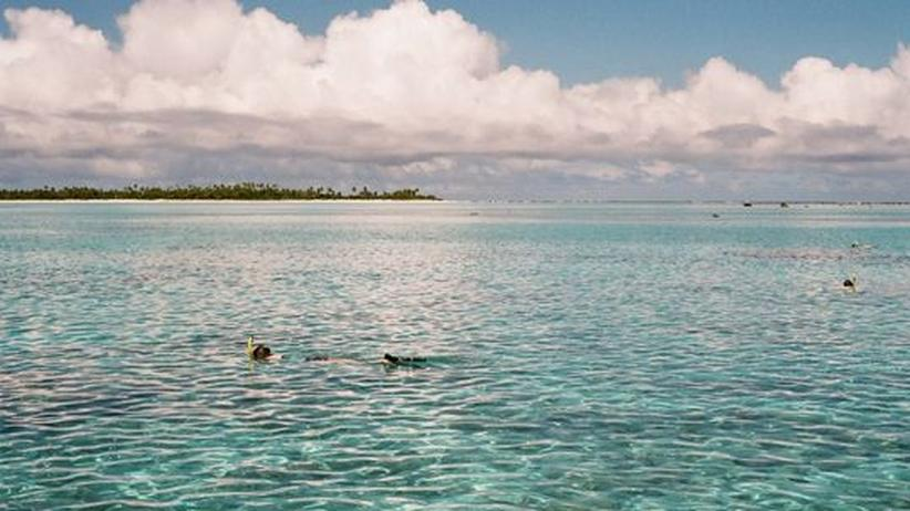 Umweltschutz: Cookinseln gründen größten Meerespark der Welt