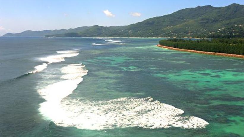 Ozean-Index: Gute Noten für Deutschlands Meere