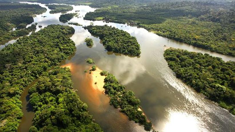 Wasserkraft: Staudämme am Amazonas gefährden das Klima und den Regenwald