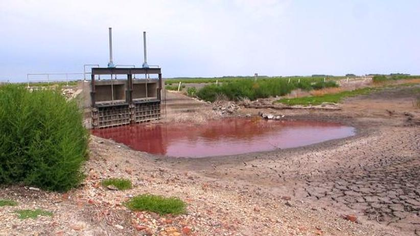 Dürre: Kansas' grüne Oase ist ausgetrocknet