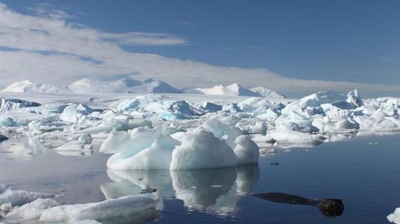 Klimatologie: Mehr Eis am Südpol trotz Erderwärmung