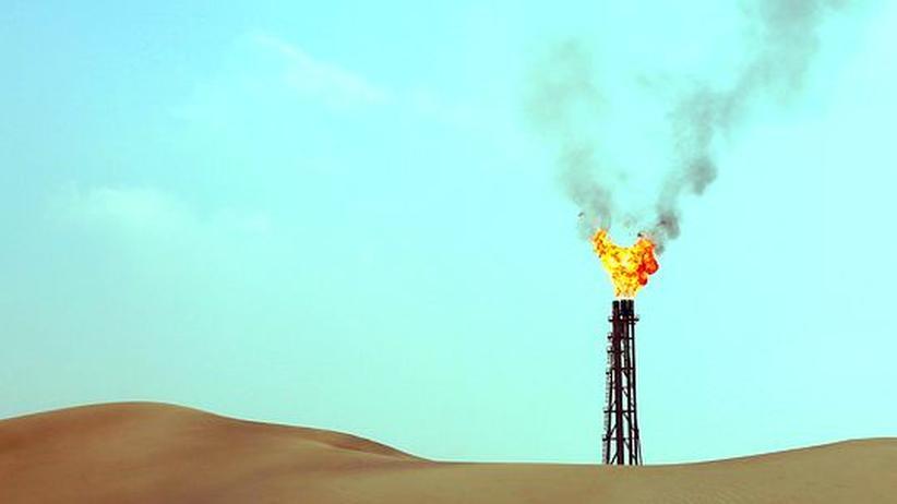 Geplantes Institut: Katar will mit deutscher Hilfe in die Klimaforschung einsteigen