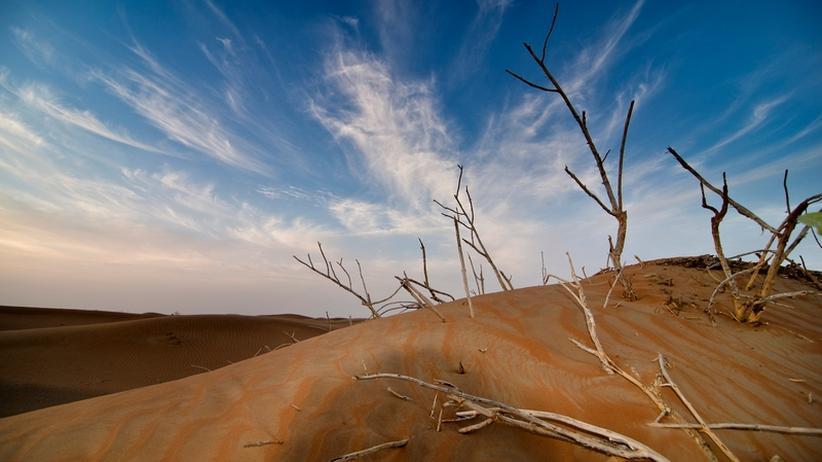 Klimawandel: Was die Erde anheizt