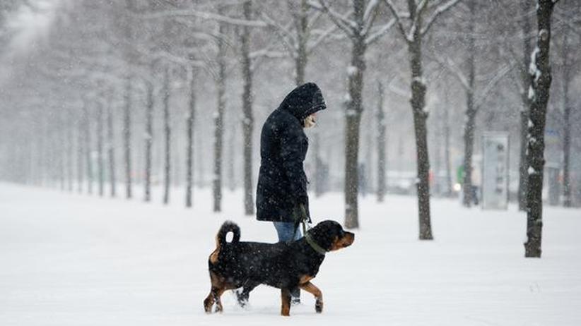 Meteorologie: Drei Gründe, warum wir im März noch Winterwetter haben
