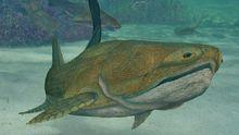 """Urfisch mit stolzem Kiefer: Vor 419 Millionen Jahren schwamm der Panzerfisch """"Entelognathus promiordiales"""" im Meer."""