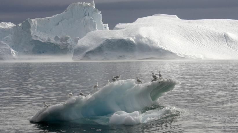 Schifffahrt: Hunderte Eisberge, direkt voraus