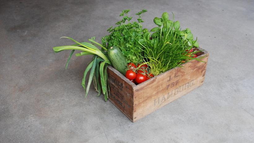 nachhaltigkeit die ganz groe gut bse kobilanz - Okobilanz Beispiel