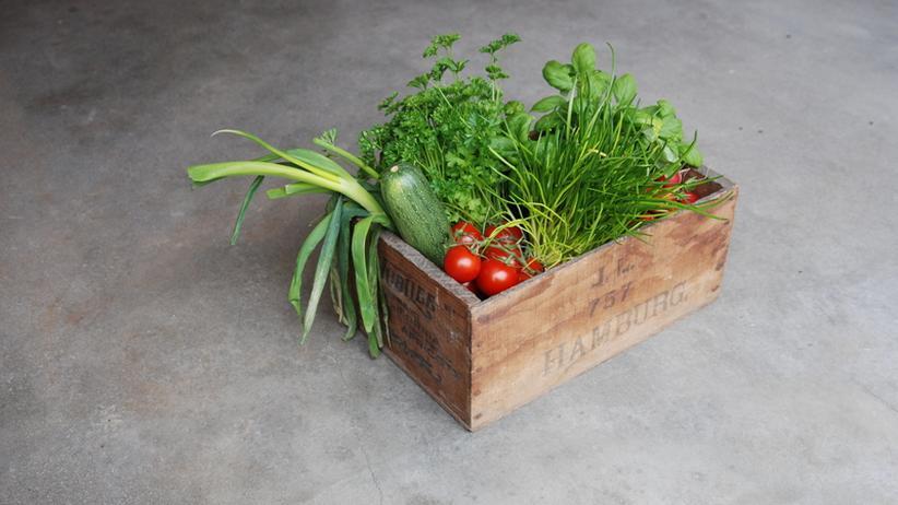 Ernährung: Endlich bewiesen: Bio ist besser! Oder?